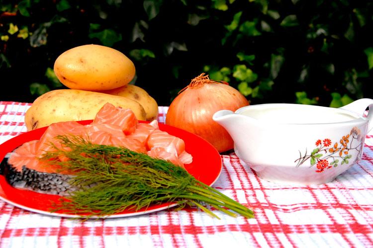 03-ingredientes-sopa-filandesa-S-