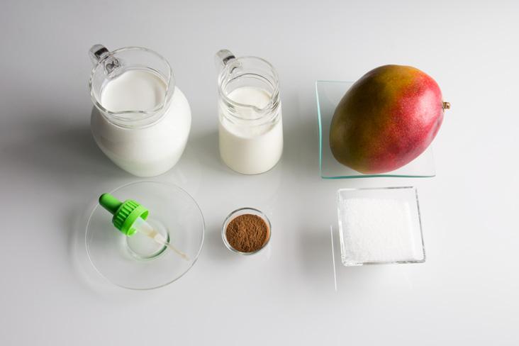 071-cuajada-casera-con-mango-y-canela-ingredientes1
