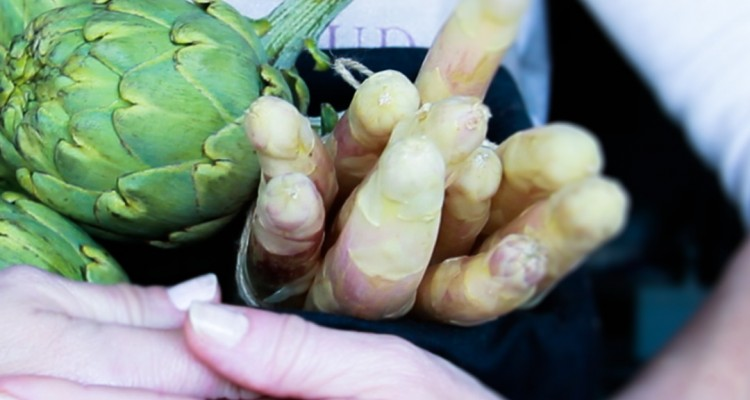 alcachofas-esparragos